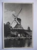 T48 Ansichtkaart Weesp - Molen 't Haantje - 1951 - Weesp