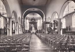 Deerlijk Binnenzicht Der Kerk St-Columba - Deerlijk