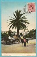 Carte Postale  ( LAS PALMAS ) Timbre Espagne Obliteration  PAQUEBOT PLYMOUTH   2  - 1911 - Espagne