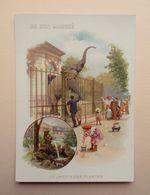 Chromo - AU BON MARCHE - LE JARDIN DES PLANTES  - Elephant - 16 X 11,5 Cm - Au Bon Marché
