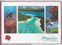 MAURICE .- Couleurs De L' Ile - Mauritius