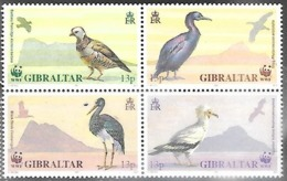 Gibralter 1991  Sc#591-4  WWF Birds Block  MNH   2016 Scott Value $7 - Unused Stamps
