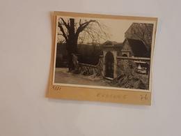 43651 -  Evegnee  Photo  9  X  6,5  Collee  Sur Carton - Soumagne