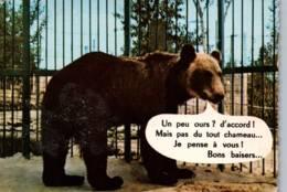 CPSM - PARC Zoologique Des CONDEMINALS - OURS BRUN (Carte Humour) - Edition Combier - Bears