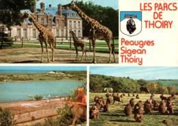 CPM - LES PARCS De THOIRY Et SIGEAN - Multivues - Edition Combier - Other
