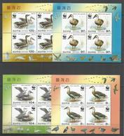 4x DPR KOREA - MNH - Animals - Birds - WWF - Uccelli