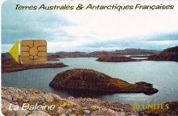 TELECARTE  NEUVE 50 UNITES LA BALEINE - TAAF - Terres Australes Antarctiques Françaises