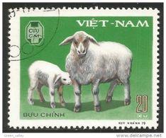 930 Vietnam Mouton Sheep Schaf (VIE-138) - Ferme