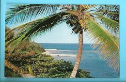PUERTO RICO---the Sunny Caribean--tropical Splendor In The Caribbean--voir 2 Scans - Puerto Rico