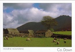 1 AK Nordirland * Mourne Mountains Im County Down * - Down