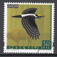 Polen Europa Cept 1999 Gestempeld Fine Used - 1999