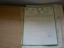R Lowit Buchhandlung Antiquariat Verlag Wien Leipzig 1929 - Autriche