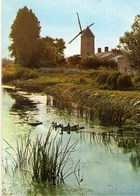 Petit Calendrier 1977 Moulin Au Pays De Monts - Calendriers
