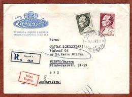Eilboten Expres, Einschreiben Reco, Illustrierter Umschlag Loewen, Tito, Zagreb Nach Fuerth 1969 (93637) - Covers & Documents