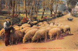 64-BERGER DES PYRENEES-N°336-C/0005 - Autres Communes