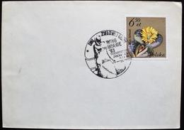 1983 Poland Polska Postmark Flamme Winobranie Dni Zielonej Wine Vin Vino Grape - Machine Stamps (ATM)