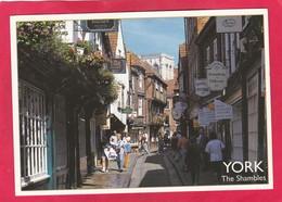 Modern Post Card Of The Shambles,York,North Yorkshire,England.P70. - York