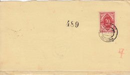 Slovenia SHS 1920 Postal Money Order With SHS Slovenia Postage Due (Porto) Stamp, Postmark METLIKA - Slovenia