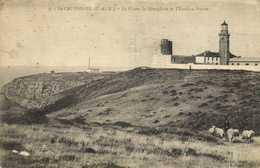 LE CAP FREHEL  (C Du N) Le Phare ,le Semaphore Et L'Extreme Pointe Troupeau De Moutons RV - Cap Frehel