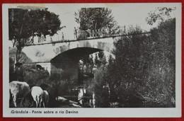 Postcard Of The   Grandola /  Ponte Sobre O Rio Davino  ( Lote N º 1331 ) - Setúbal