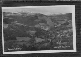 AK 0477  Edlitz - Hohe Wand ( Schneeberg-Hochegg ) / Verlag Pelnitschar Um 1941 - Neunkirchen