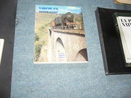 ( Train Locomotive Chemin De Fer ) Vilain  Vapeur En Montagne - Other