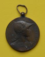 Médaille En Bronze - Patria - Ville De Fontainebleau - Prix Général D'Arc - 1er Championnat De France - 12 Juin 1893 - Tir à L'Arc