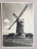 NETHERLANDS - Heeze - Korenmolen - Molenserie Nr.1 - 1939 - Netherlands