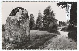 CONFOLENS (16) Et Ses Environs - Menhir D'Esse    -   Cpsm - Confolens