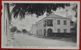 Postcard Of The   Marinhais /    Um Aspecto Da Rua Principal  ( Lote N º 1347 ) - Santarem