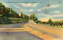Catskill, Mohican Trail - Lot. 3177 - Catskills