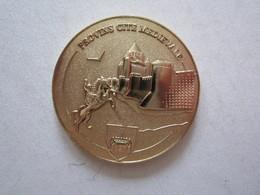 Médaille Provins Cité Médiévale - Turísticos
