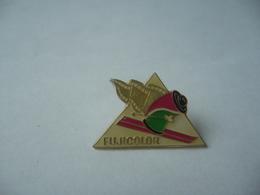 PIN'S PINS FUJICOLOR - Photography