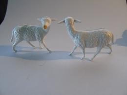 2 Sheep Moutons Schaeffer Ferme Farm Bauernhof Circus Circus Zoo - Zonder Classificatie