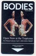 Tropicana Casino & Hotel, Las Vegas, Used Magnetic Hotel Room Key Card, # Trop-23 - Chiavi Elettroniche Di Alberghi