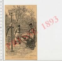 Presse 1893 Gravure La Mort Du Phoque Zoo Parc Zoologique Perroquet Sur Perchoir Oiseau Brouette Transport Animal CHV30 - Non Classés
