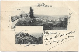 Ettelbruck - Vue Panoramique Et Châteaux De Berg Et De Bourscheid (ca. 1897 - Bernhoeft) - Ettelbruck