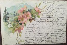 Cpa, Illustrateur-Illustration, Fleurs Sur Fond De Paysage De Montagne , Ruisseau, écrite En 1903, éd Schaefer & Scheibe - 1900-1949