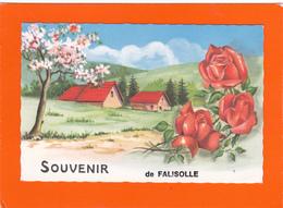 Souvenir De Falisolle - Autres