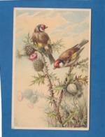 DEUX OISEAUX SUR DES FLEURS - Oiseaux