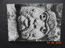 Chamalieres. Grotte Du Chien. Dieu Tricephale Des Trois Ages De La Vie. Lys 48 Dans L'etat (des Plis) - France