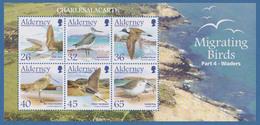ALDERNEY AURIGNY  2005  MIGRATING BIRDS  WADERS  M.S.  SG MS 265  U.M.  N.S.C. - Alderney