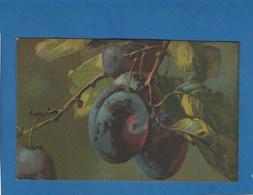 SERIE ARTISTICA VELLUTO PRUNES - Flowers, Plants & Trees