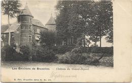 Groot-Bijgaarden  *  Environs De Bruxelles - Chateau Du Grand-Bigard (Nels, 175) - Dilbeek