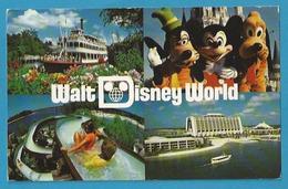 US.- WALT DISNEY WORLD. GOOFY, MICKY AND PLUTO. - Disneyworld
