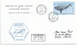 YT 589 Baleine Franche Australe - Martin De Viviès - St Paul Amsterdam - 07/09/2011 - Lettres & Documents