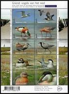 2016 Netherlands Birds Of The Griend Island Minisheet (** / MNH / UMM) - Unclassified
