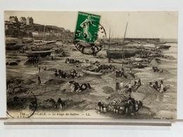 35 - CANCALE - LE TRIAGE DES HUITRES - ANIMÉE - 1912 - Cancale