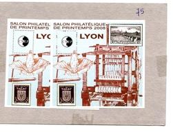 FRANCE - 2 Blocs CNEP Lyon 2008 - Neufs** - CNEP