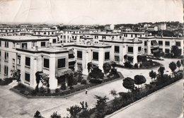 LYON ( 69 ) - Hopital Edouard Herriot - Perspective Sur Les Pavillons - Lyon